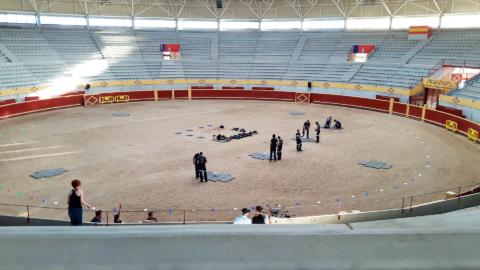 Demostración en la plaza de toros cubierta de Moralzarzal